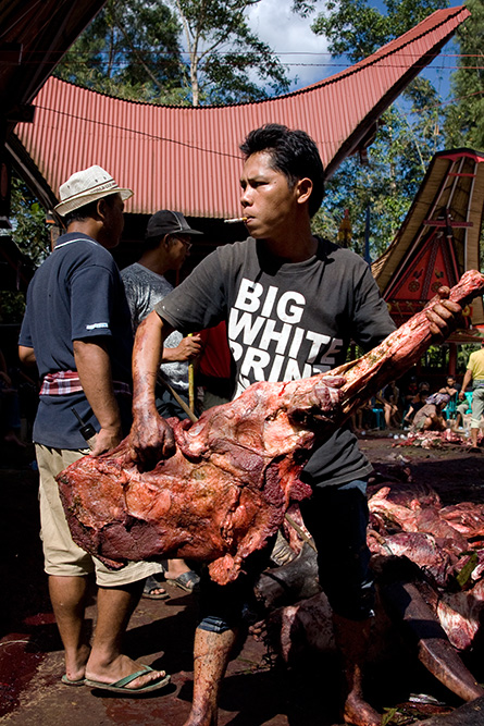 Chopping and distributing the meat of slaugtered buffalos.